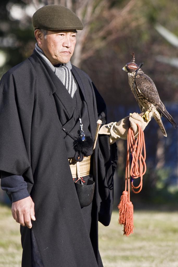 falconer5