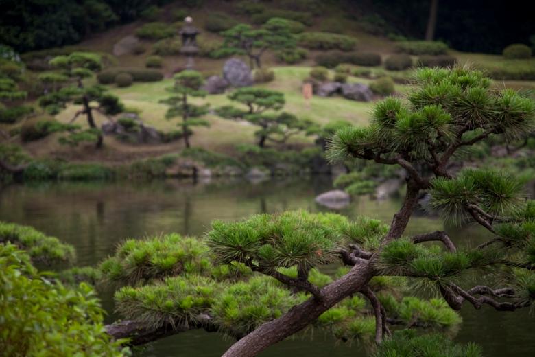 kiyosumi5